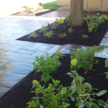 EdenboroughLandscaping-shadeprivacy-2